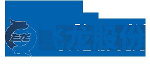 飞龙汽车部件股份有限公司