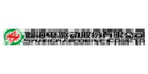 上海电驱动股份有限公司